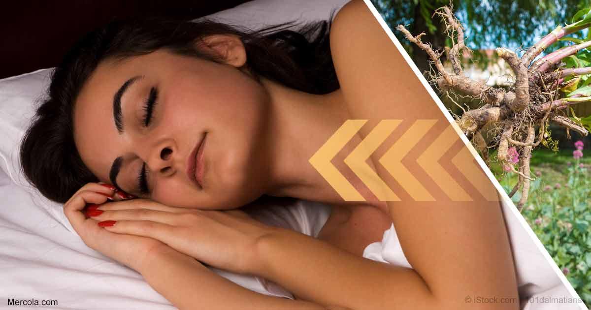 Can Valerian Root Help You Sleep Better