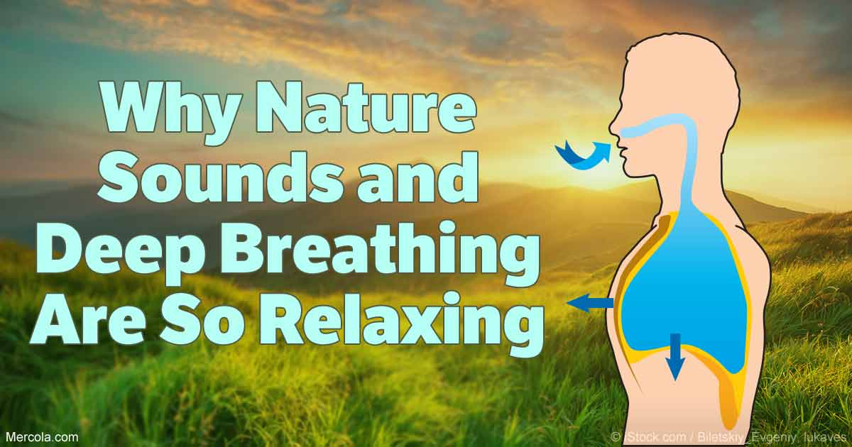 Why Nature Sounds and Deep Breathing Are So Relaxing