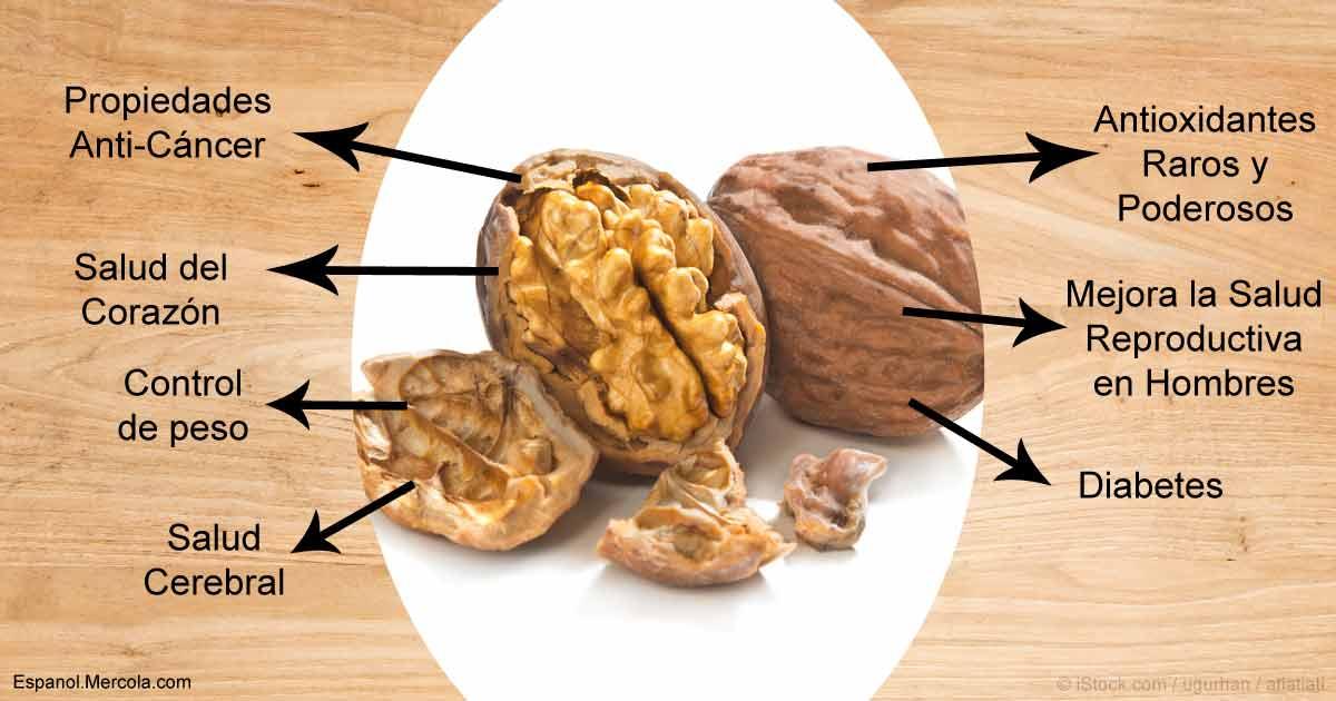 7 Beneficios De Comer Nueces Nutrición De Las Nueces