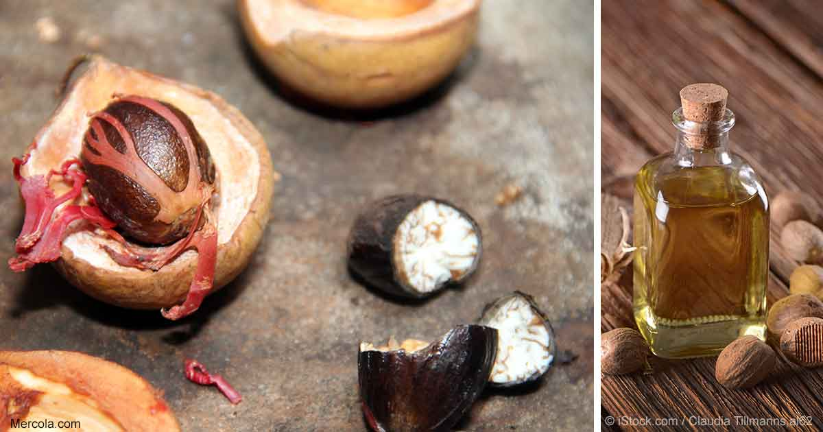 Nutmeg Esential Oil Benefits and Uses