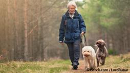dog ownership benefits for seniors