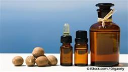 Nutmeg Oil: An Essential Oil to Go Nuts For