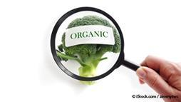 The Problem With Organic Hydroponics