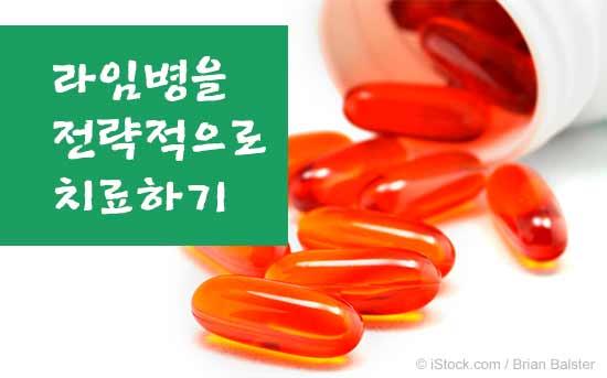라임병 치료 방법
