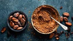 Can a Cocoa Compound Delay Diabetes?