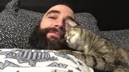 Kitty Cuddles and Kisses