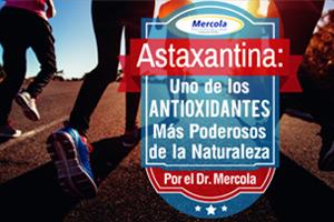 Investigación Sobre la Astaxantina Demuestra que Tiene Beneficios Significativos en Todo el Cuerpo