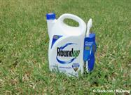 roundup causes liver disease