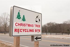 biochar recycling