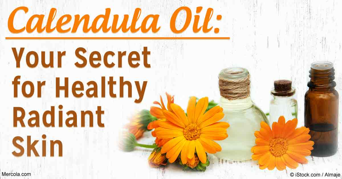 Herbal Oil Calendula Oil Benefits And Uses