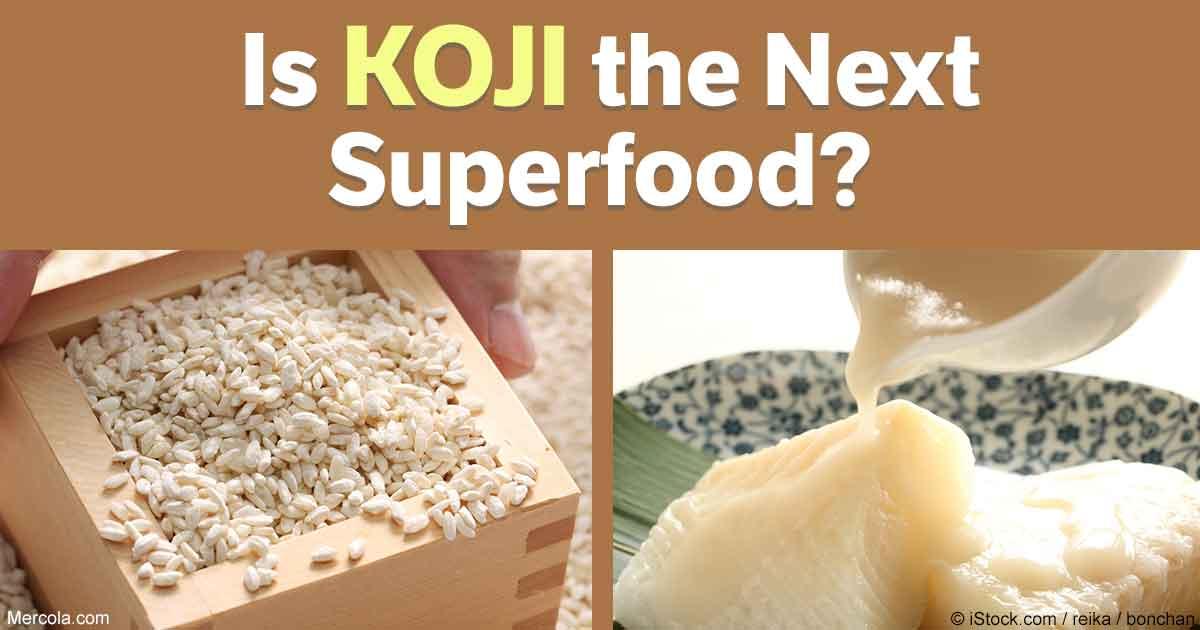 Koji - the Biggest Food Trend of 2017?