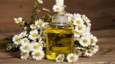 German Chamomile Essential Oil: Benefits and Uses