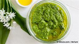 Marvelous Moringa Pesto Recipe: A Timeless Classic With a Healthy Twist