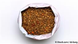 processed pet food