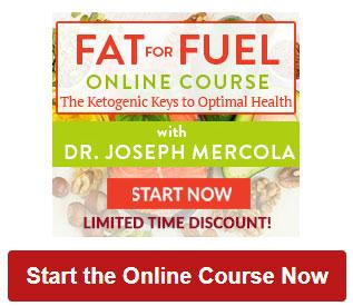 mmt online course