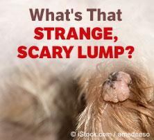 Scary Lump