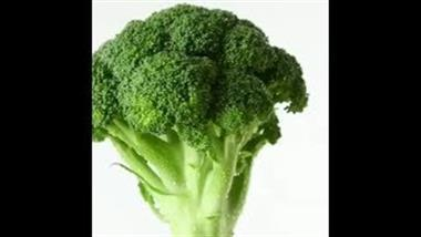 Broccoli Compound Lowers Risk of Obesity and Helps Treat Diabetes
