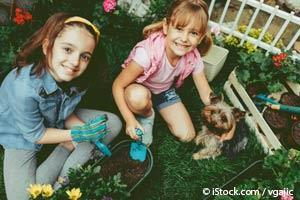 Jardín Apto Para Perros