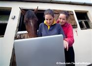 Horses Use Touch-Screen Computers to Show Off Their Intelligence