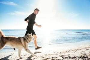 athletic dog breed