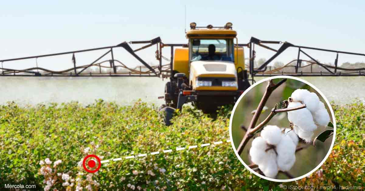 Organic cotton matters