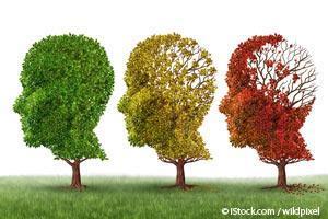Cómo Mejorar la Función Cerebral y Prevenir la Demencia con y/o sin el Uso de Estrategias de Bajo Costo