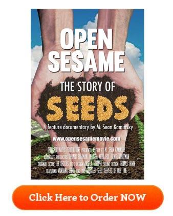 Open Sesame Movie