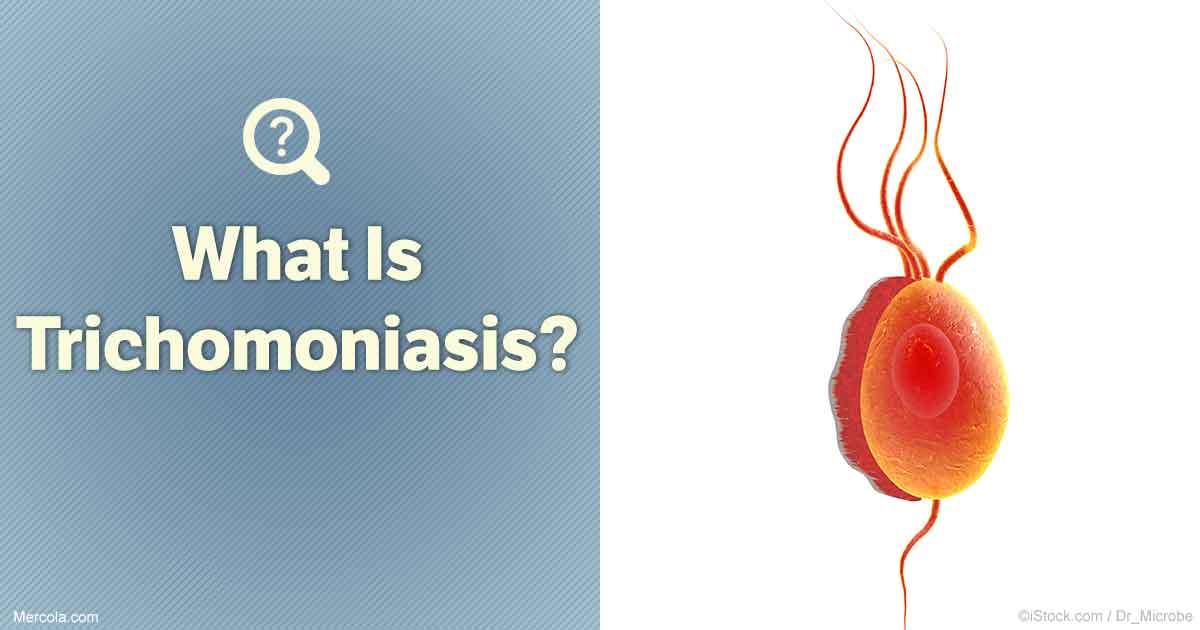 what is trichomoniasis?, Cephalic Vein