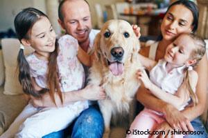 Beneficios de los Perros