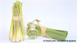 Lemongrass Oil Can Lighten Up Your Mood and More