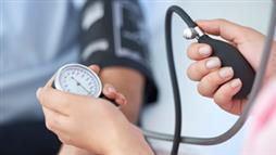Blood Pressure Lowered by Probiotics