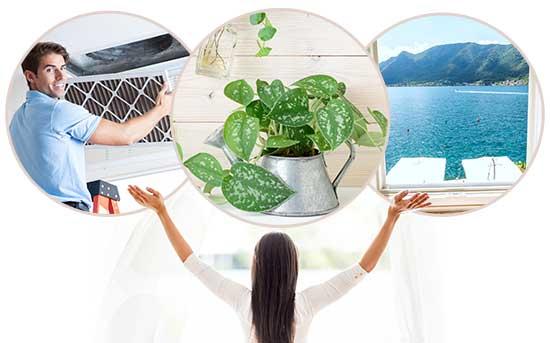 Como Reduzir a Poluição do Ar na sua Casa