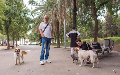 nuevos amigos con perros