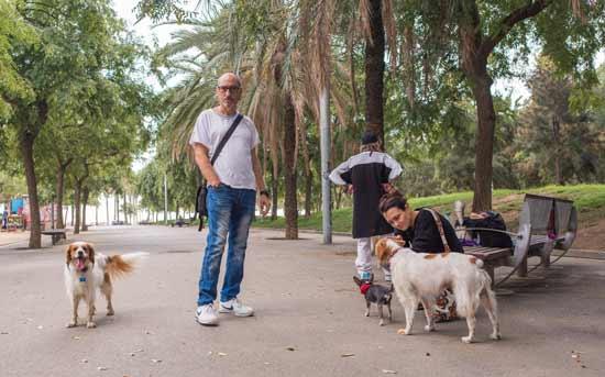 개를 산책시키는 사람들