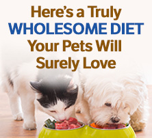 Raw Pet Food Diet