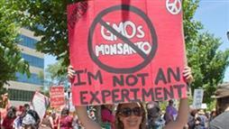Monsanto Banned From Parliament