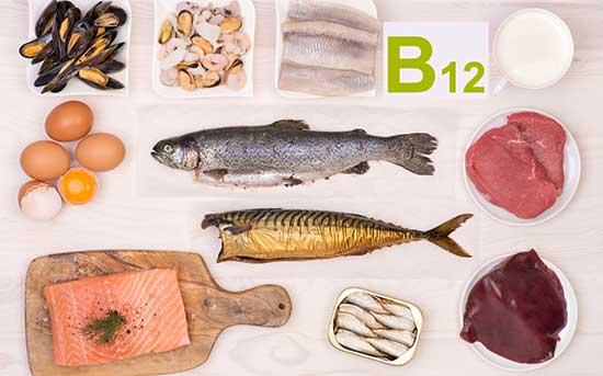 비타민 B 12가 풍부한 식단