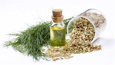 What can sweet fennel oil do for your health?
