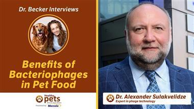 Bacteriophages: Nature's Answer to Killing Pathogens in Fresh Pet Food