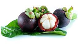mangosteen benefits