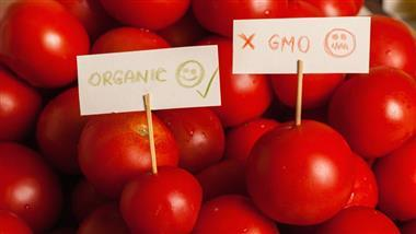 The Organic Corporate Takeover