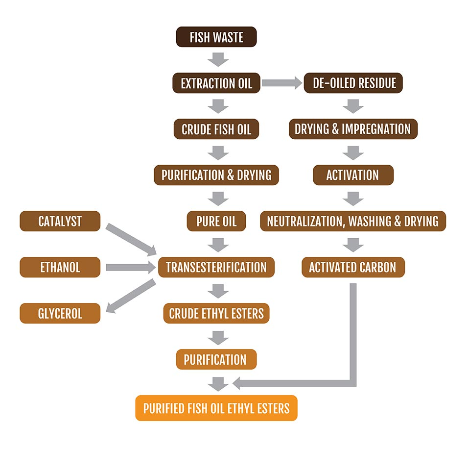 fish oil ethyl ester production fish waste