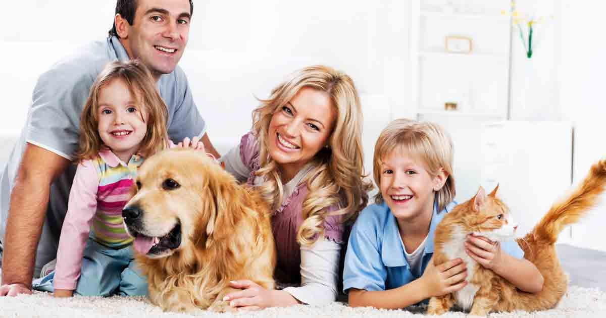 Pet Exposure May Reduce Allergies