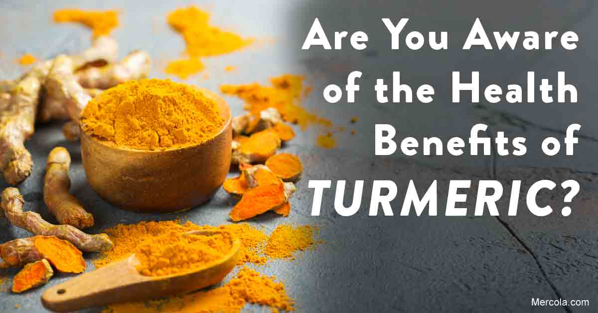 Herbs and Spices: Turmeric Herb Benefits and Uses