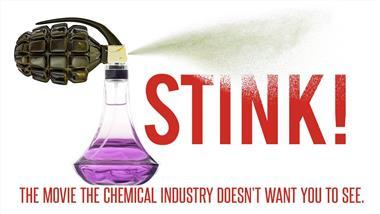 The STINK: Why Dangerous Chemical Fragrances Are Used to Make Clothes Smell