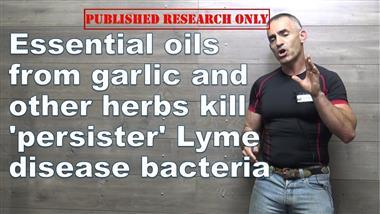 Essential Oils — Highly Effective at Destroying Lyme Bacterium