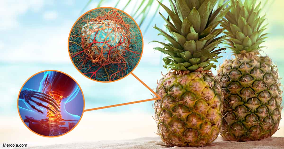 The Many Health Benefits of Proteolytic Enzymes