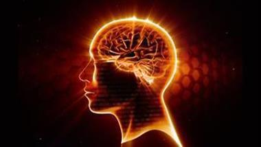 curcumin supplementation cognitive benefits