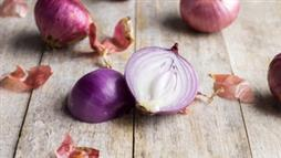 Antibiotic Resistance: Onions to the Rescue