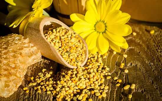 bienenpollen-gesundes-nahrungsergänzungsmittel